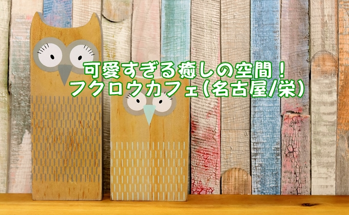 フクロウカフェ(愛知県名古屋市、ふくろうのいる森カフェ 栄店)